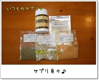 2009_0823_074520AA.jpg