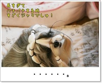 2009_0825_073333AA.jpg