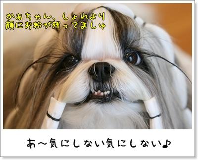 2009_0825_073436AA.jpg