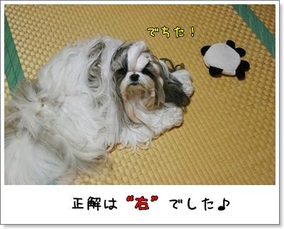 2009_0826_203116AA.jpg