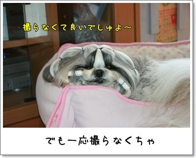 2009_0908_074808AA.jpg