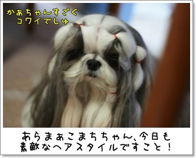 2009_0909_184557AA.jpg