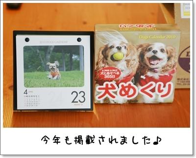 2009_0912_083800AA.jpg