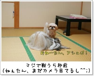 2009_0912_202410AA.jpg