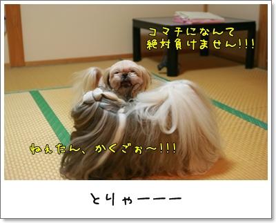 2009_0912_202432AA.jpg