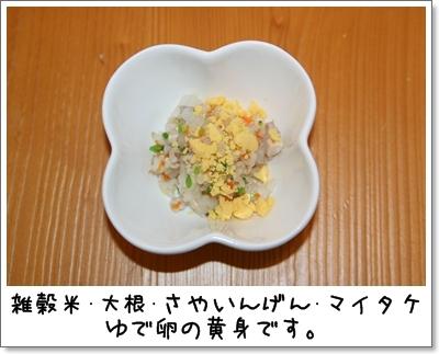 2009_0912_202720AA.jpg