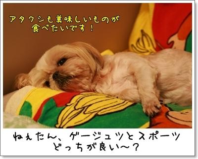 2009_0912_231132AA.jpg