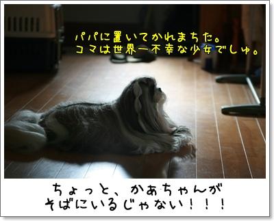 2009_0913_074246AA.jpg