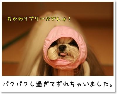 2009_0913_210435AA.jpg