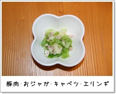 2009_0917_062708AA.jpg