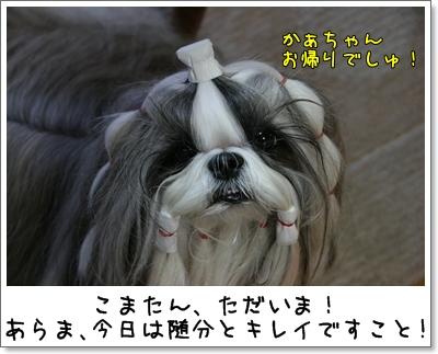 2009_0920_172146AA.jpg