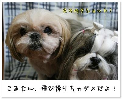 2009_0921_174646AA.jpg