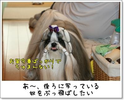 2009_0922_080543AA.jpg