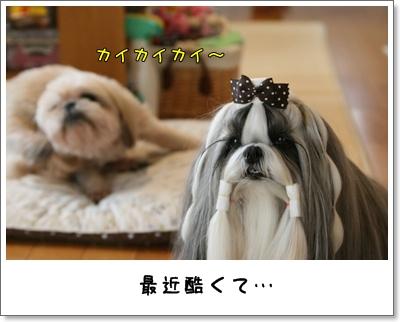 2009_0927_100633AA.jpg