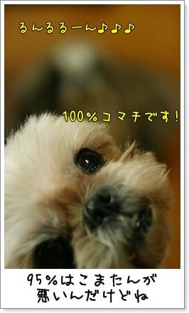 2009_0928_192936AA.jpg