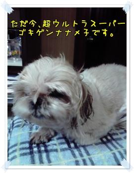 2009_0929_190800AA.jpg