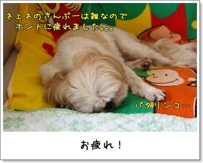 2009_1003_133736AA.jpg