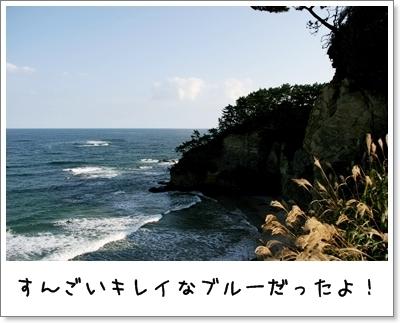 2009_1004_150433AA.jpg