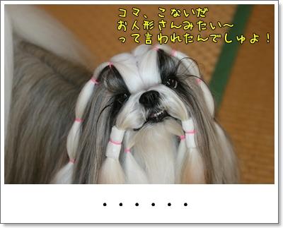 2009_1005_073212AA.jpg