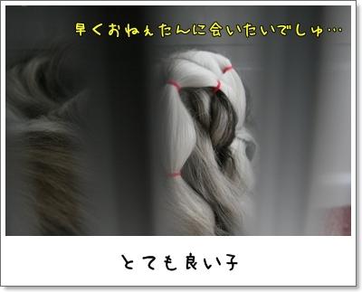 2009_1007_075508AA.jpg