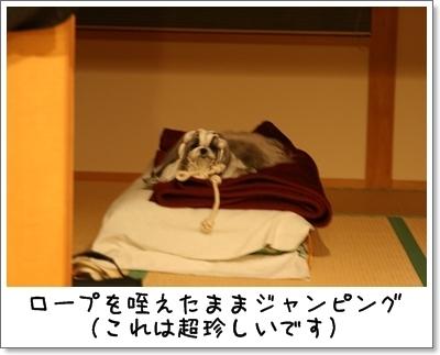 2009_1007_200421AA.jpg