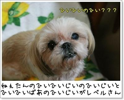 2009_1008_192921AA.jpg