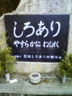 20100131095404.jpg