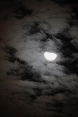 半月雲11081