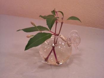天使の羽のお気に入りの花瓶です