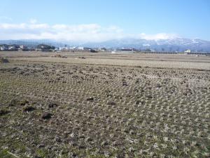 山と田んぼと畑です。エンドレスです。