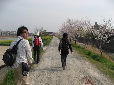 桜遍路旅-3