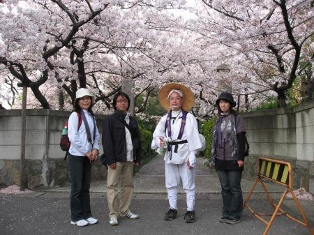 桜遍路旅-4