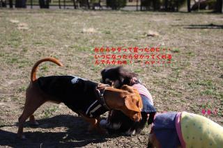 水元公園3