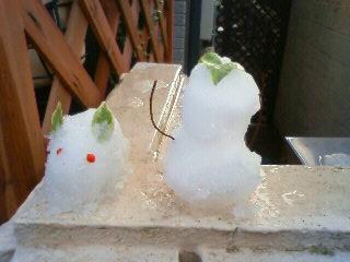 雪ウサギ3