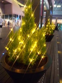 秋葉原クリスマス2
