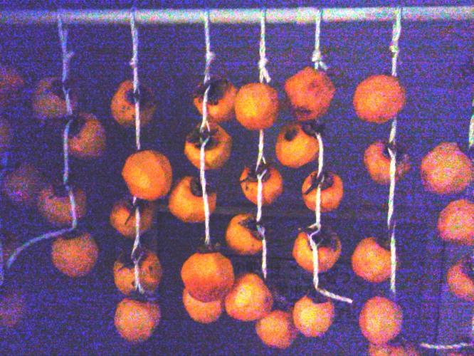 干し柿準備