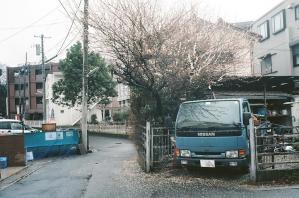梅と青いトラック