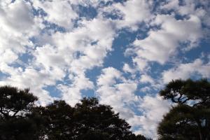 雲が千切れる