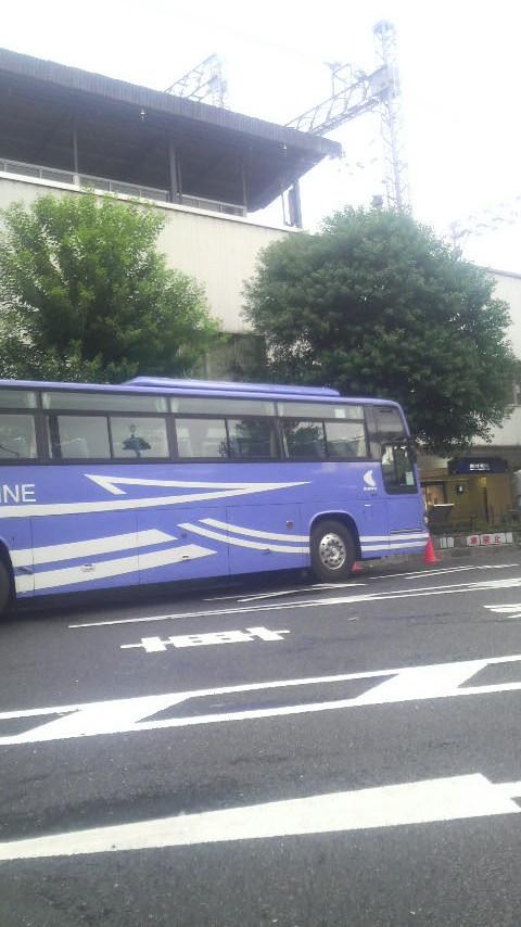 P1000089.jpg