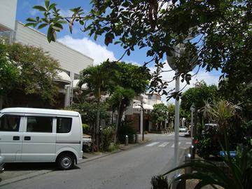 avenue3.jpg