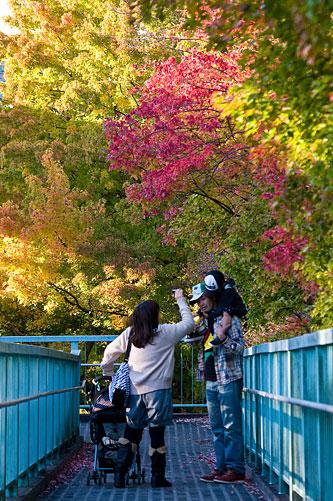東山動植物園-3