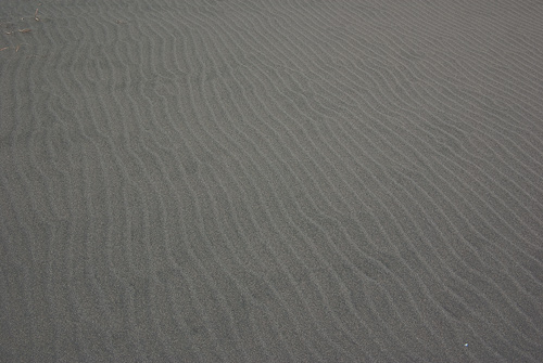 中田島砂丘2-2