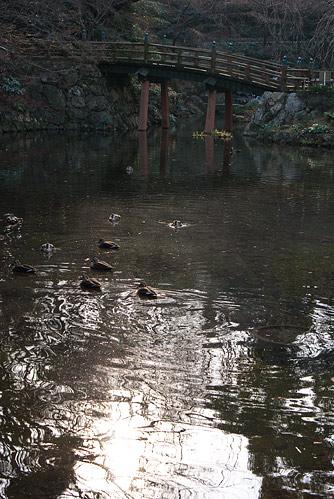 浜松城西池の名残