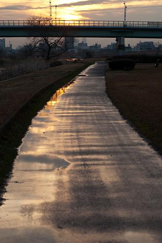 雨上がり河原-7