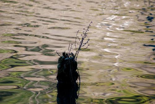 海上水風景-11
