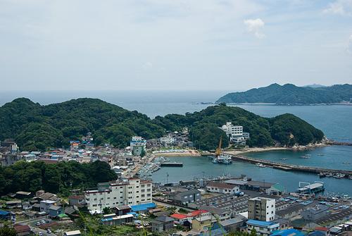 高台から見下ろす和具港