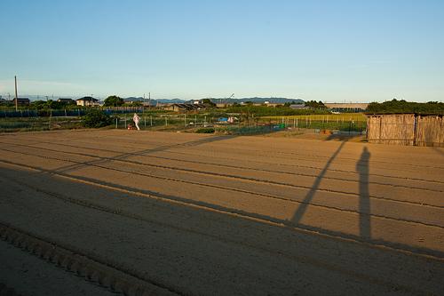 農作業の風景