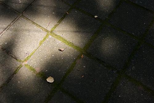 三保の松原1-3