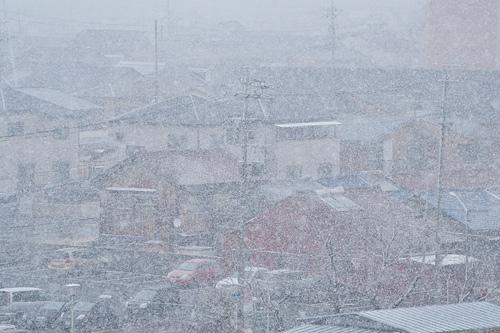 雪降り-4