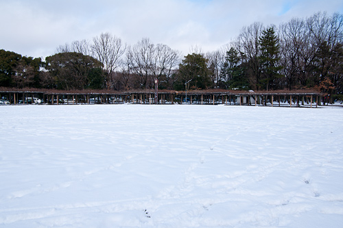 雪の名古屋城1-12